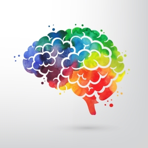 brain colorful